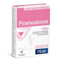 Pileje Feminabiane Cbu 30 Comprimés Bicouches à VILLEMUR SUR TARN