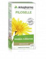 Arkogélules Piloselle Gélules Fl/45 à VILLEMUR SUR TARN