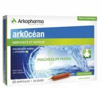 Arkocean Magnesium Marin Solution buvable caramel 20 Ampoules/10ml à VILLEMUR SUR TARN
