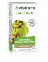 Arkogélules Garcinia Gélules Fl/45 à VILLEMUR SUR TARN