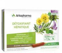 Arkofluide Bio Ultraextract Solution buvable détoxifiant hépatique 20 Ampoules/10ml à VILLEMUR SUR TARN