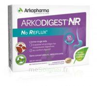 Arkodigest No Reflux NR Comprimés à croquer B/16 à VILLEMUR SUR TARN