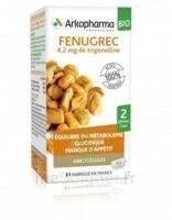 Arkogélules Fenugrec Bio Gélules Fl/40 à VILLEMUR SUR TARN