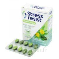 Stress Resist Comprimés Stress & fatigue B/30 à VILLEMUR SUR TARN