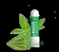Puressentiel Respiratoire Inhaleur Respiratoire aux 19 Huiles Essentielles - 1 ml à VILLEMUR SUR TARN