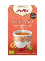 Yogi Tea Joie De Vivre à VILLEMUR SUR TARN