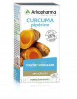 Arkogelules Curcuma Pipérine Gélules Fl/45 à VILLEMUR SUR TARN