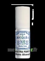 Ricqles Spray buccal sans alcool menthe 15ml à VILLEMUR SUR TARN