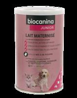 Biocanina Lait poudre maternisé B/400g à VILLEMUR SUR TARN