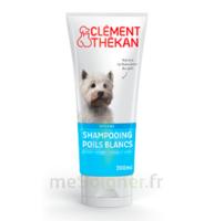 Clément Thékan Shampooing poils blancs T/200ml à VILLEMUR SUR TARN