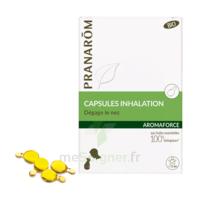 Aromaforce Caps inhalation bio B/15 à VILLEMUR SUR TARN