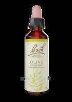Fleurs De Bach® Original Olive - 20 Ml à VILLEMUR SUR TARN